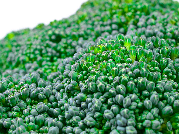 broccoli close up - xxmmxx stock photos and pictures