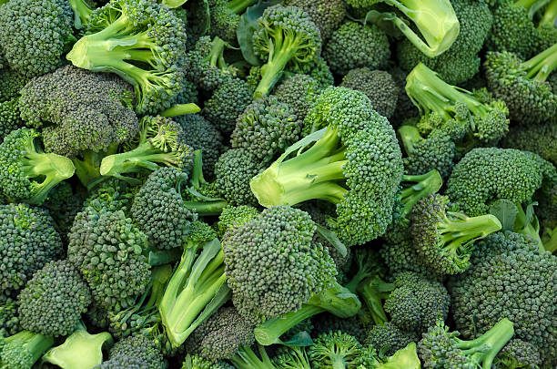 Broccoli in a pile stock photo