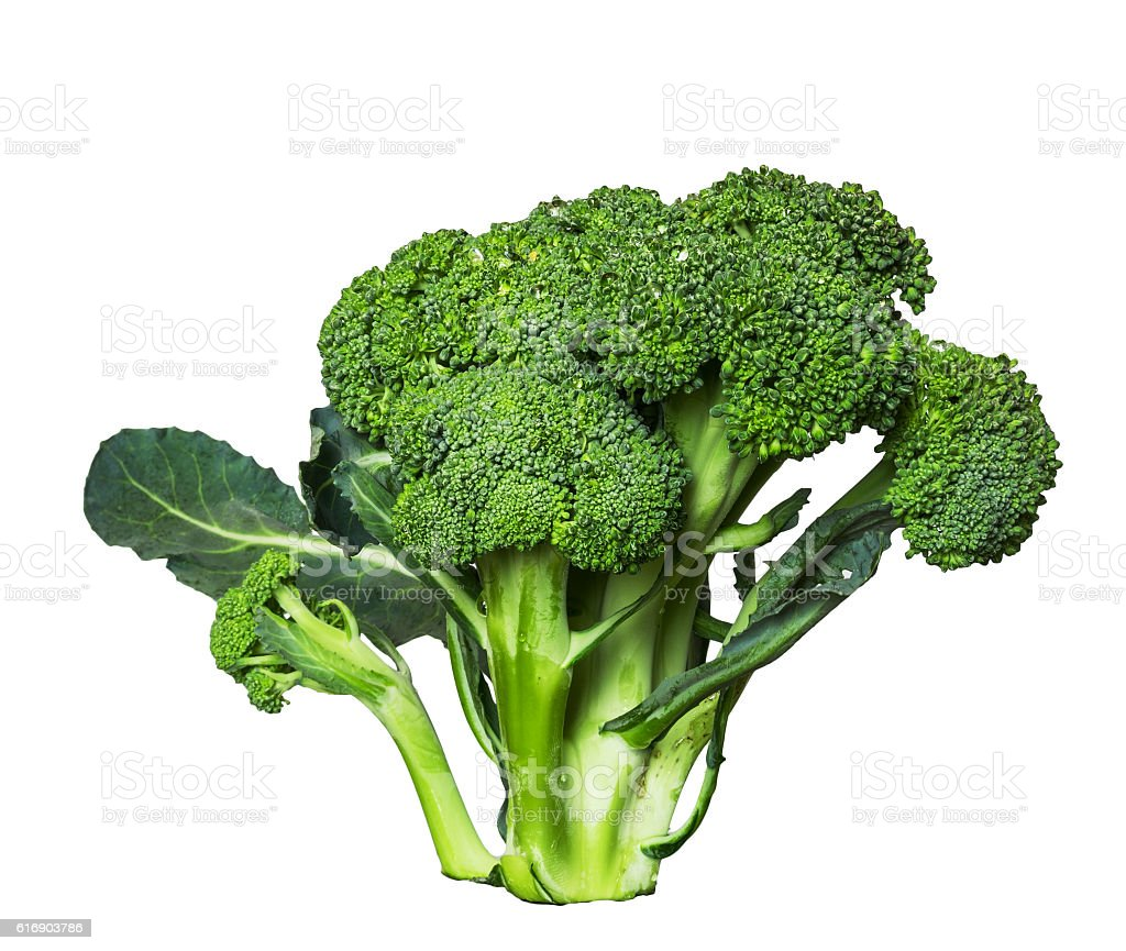 Broccoli isolated on a clean white background. stock photo
