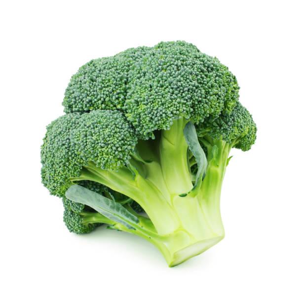 broccoli isolated on white background - białe tło zdjęcia i obrazy z banku zdjęć