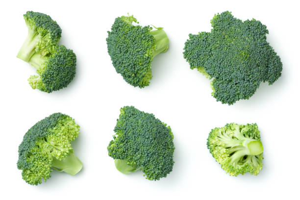 Broccoli Isolated on White Background stock photo