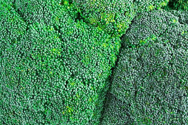 Brokkoli-Struktur – Foto