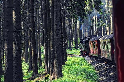 Brocken Railway Steam locomotive