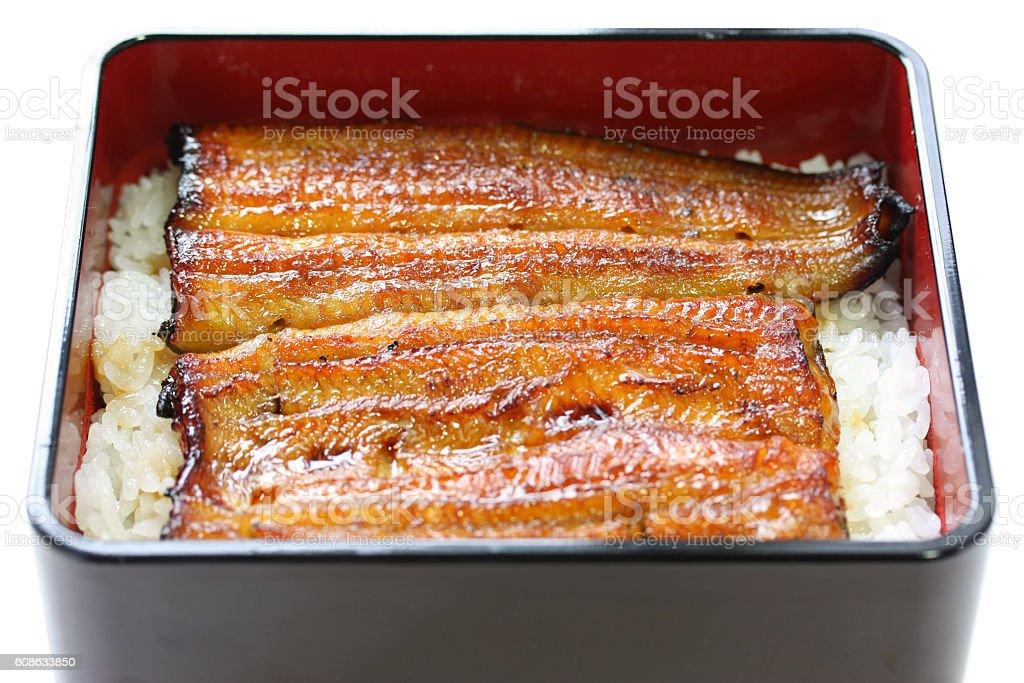 broiled eel on rice,unaju, japanese unagi cuisine – Foto