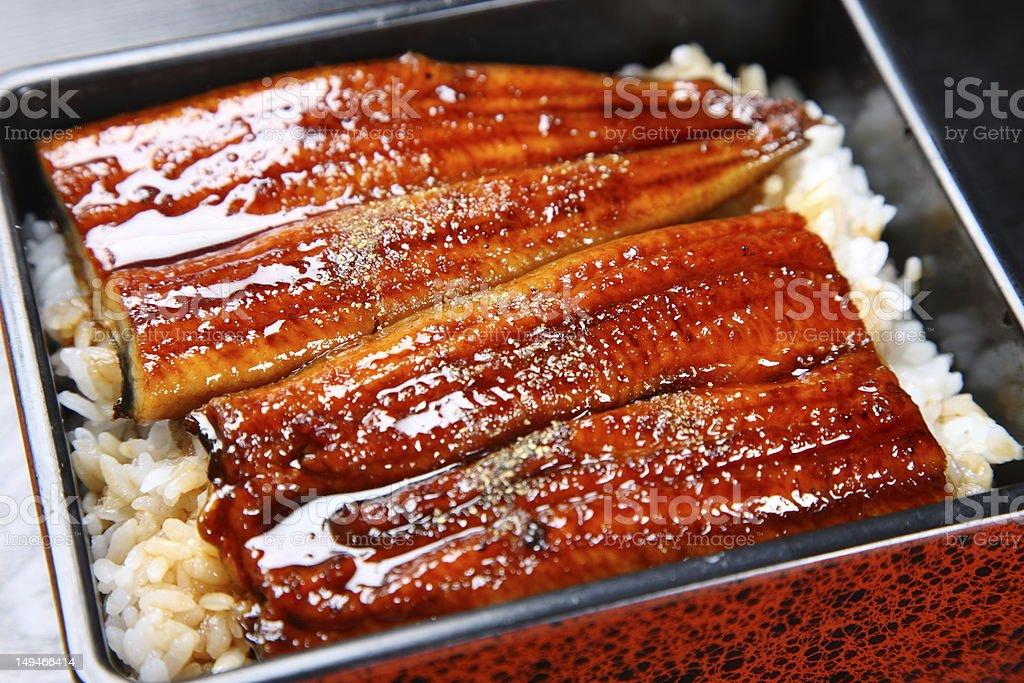 Gebratenes eels auf Reis – Foto