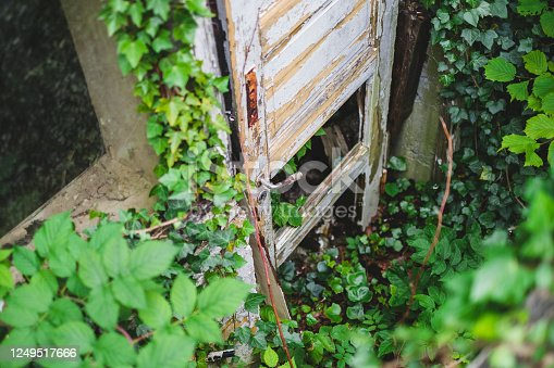 Urban exploration finding broken door of abandoned house covered in Ivy