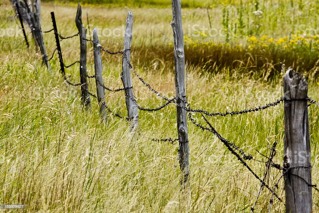 Broken Down Barbed Wire Fence Stock Photo More Pictures of