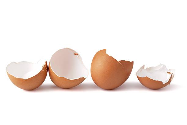 Broken egg shells stock photo