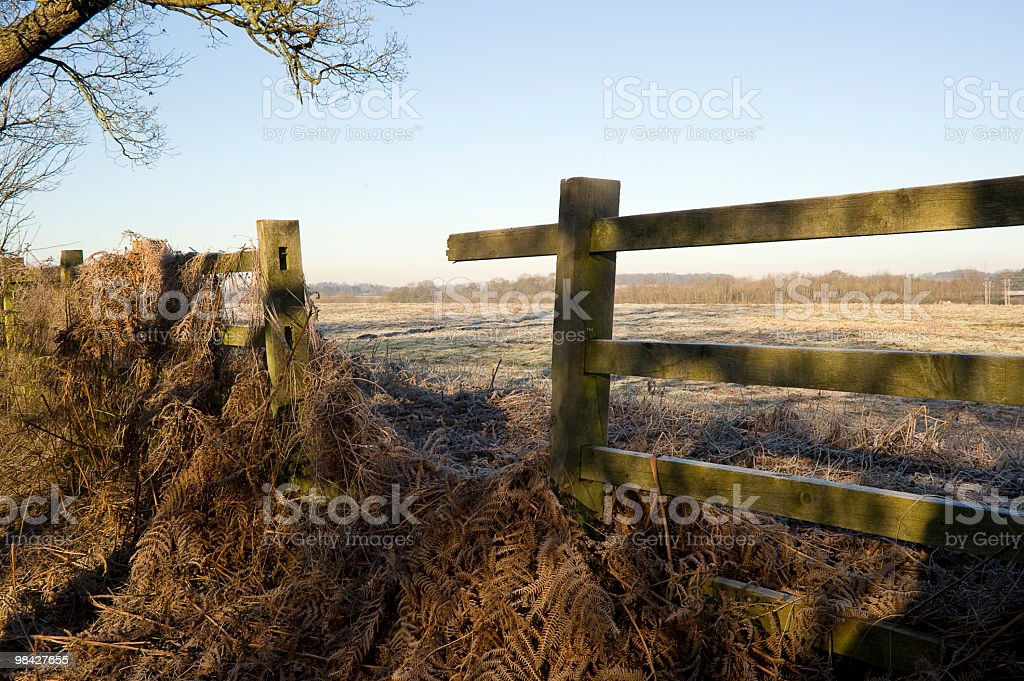 Broken fence in a pasture field royalty-free stock photo