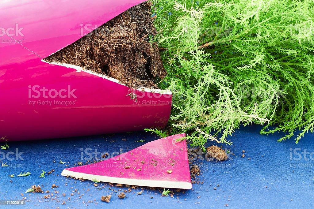 Broken flower pot stock photo