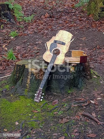 istock Broken guitar in the woods 1070751032