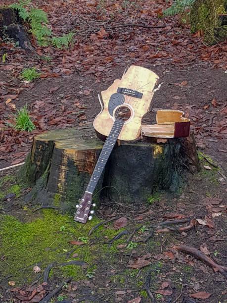 broken guitar in the woods - broken guitar stock photos and pictures