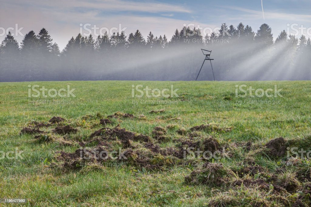 Broken meadow - Royalty-free Agriculture Stock Photo