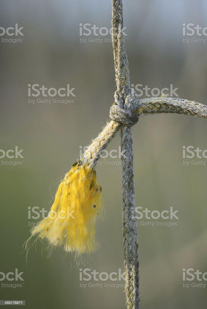 broken net in sun outoor stock photo