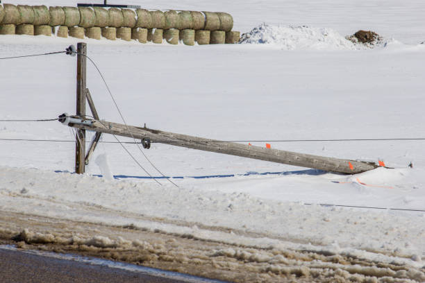 Broken Pole Downed power lines after a spring ice storm. knocked down stock pictures, royalty-free photos & images