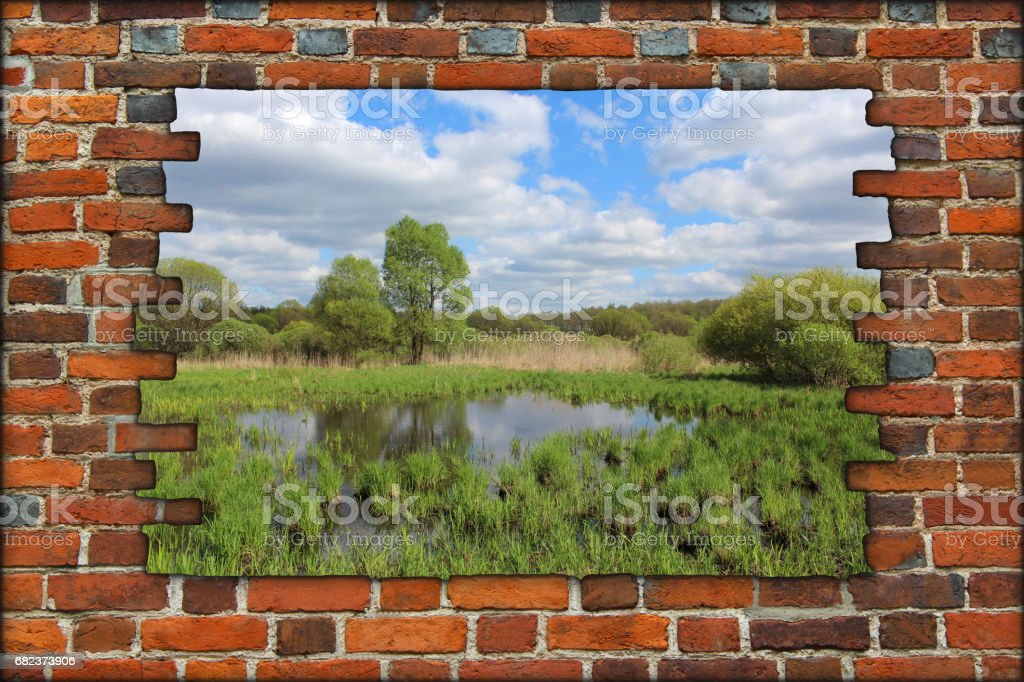 broken red brick wall and view to spring landscape foto stock royalty-free