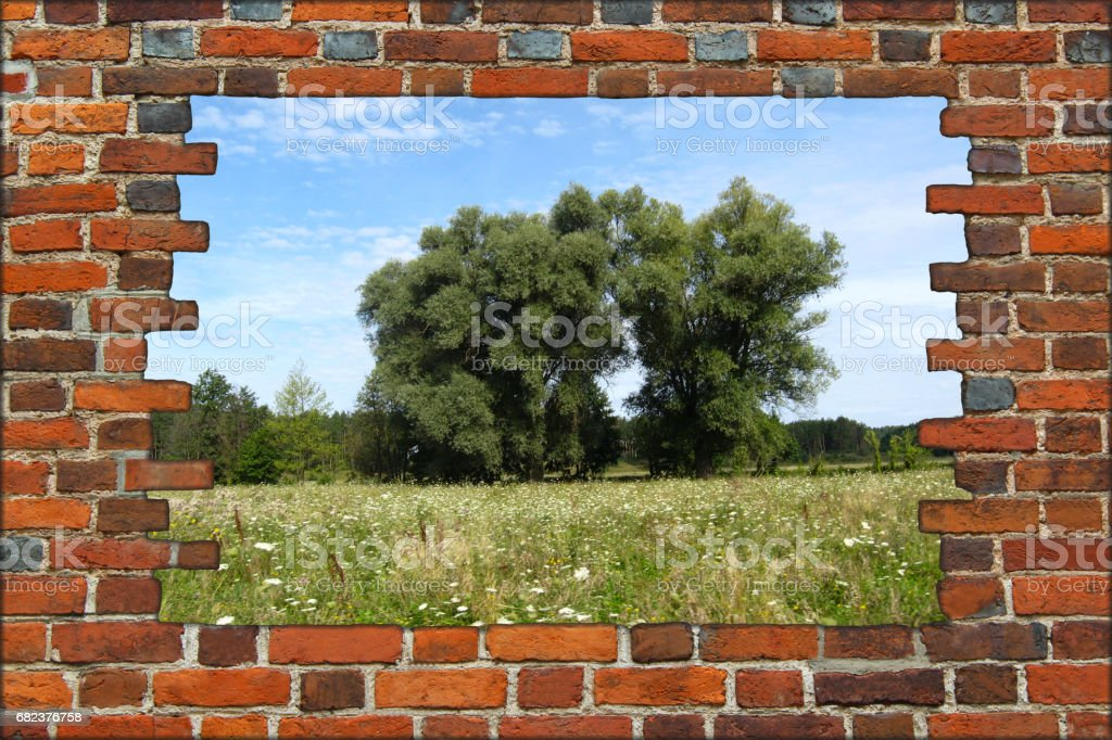 broken red brick wall and view to summer landscape foto stock royalty-free