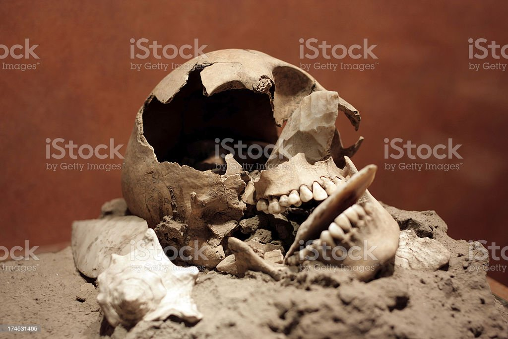 Broken Skull royalty-free stock photo