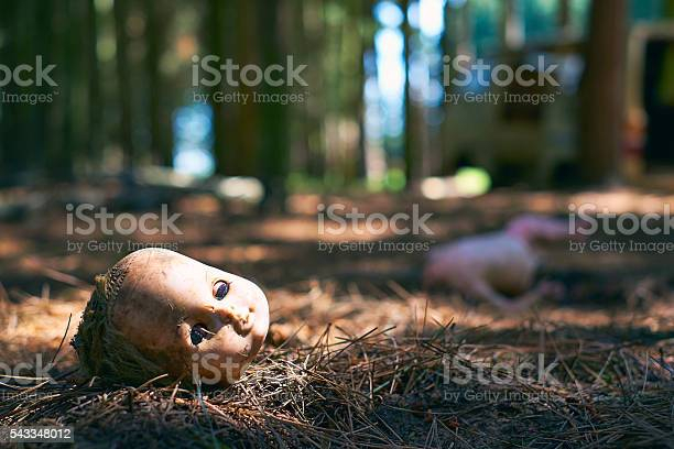 Photo of Broken Toy Doll On The Forest Floor