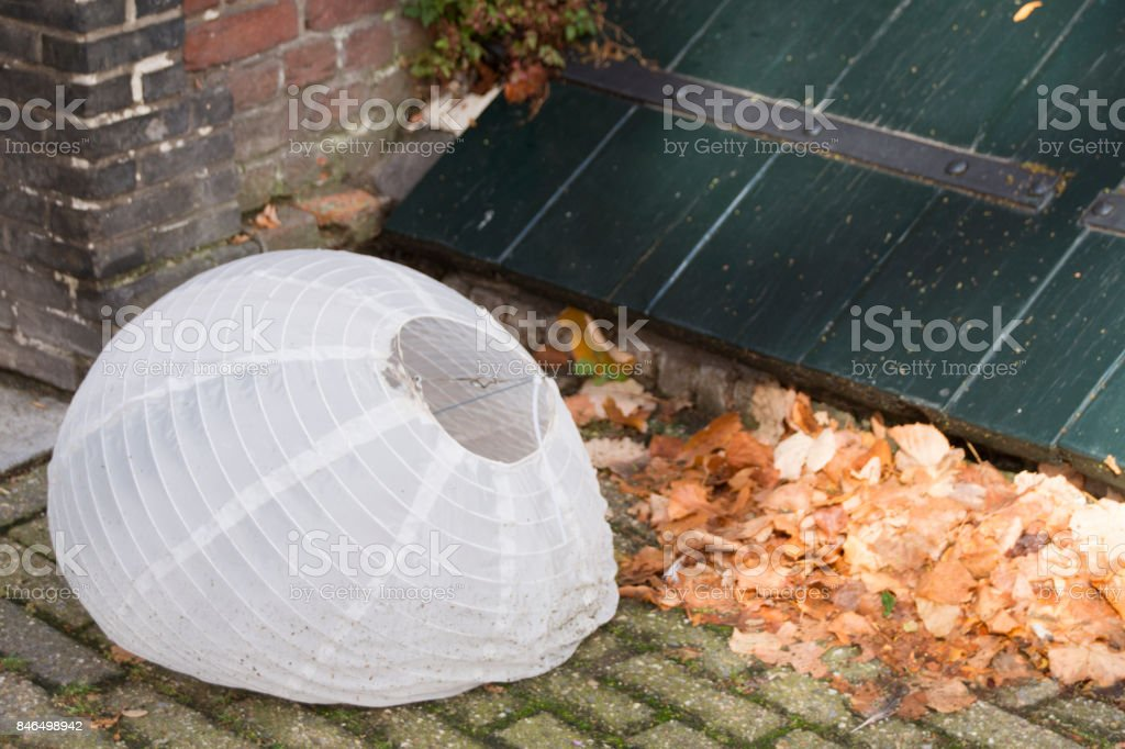broken white Chinese design lantern for wedding party, on the ground with brown leaves stock photo