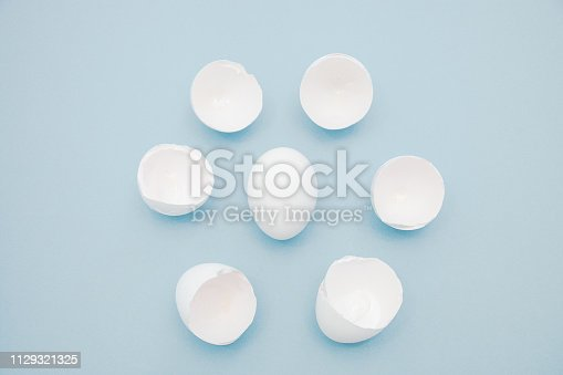 Broken white egg shells around the whole egg, isolated on blue background