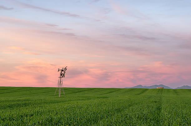 Broken Wind pump on Farmlands – Foto