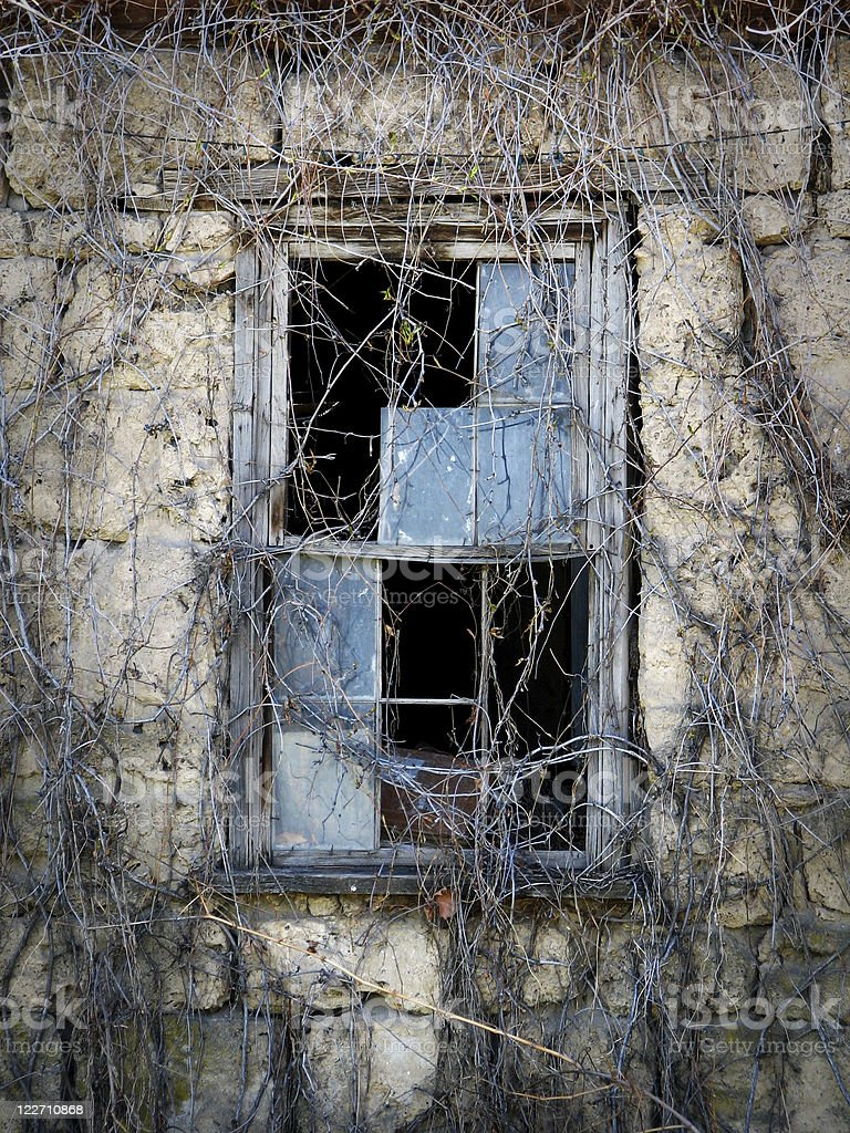Broken window panes on vine-covered wall royalty-free stock photo