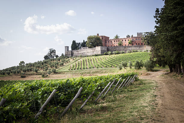 Brolio Castle and the nearby vineyards stock photo