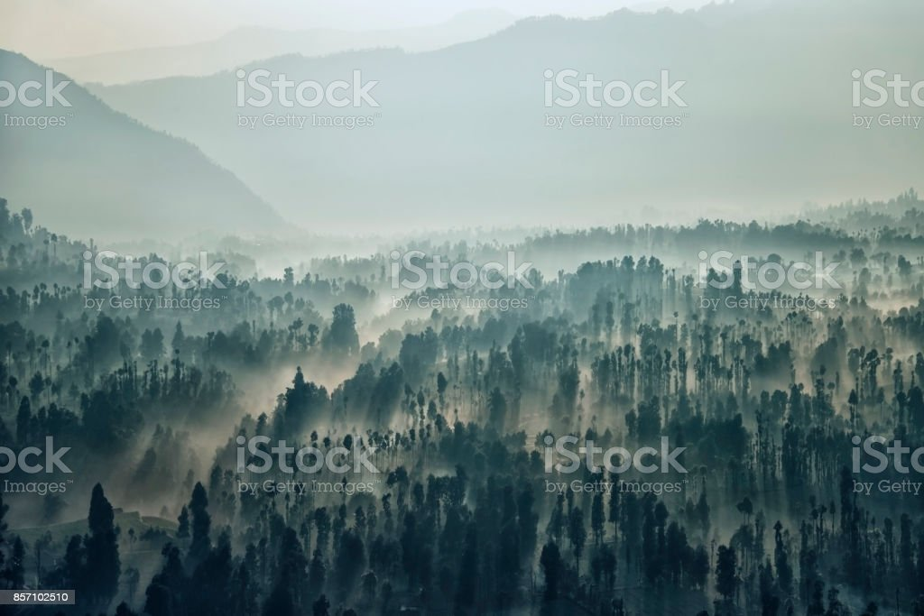 Bromo national park landscape in the morning stock photo
