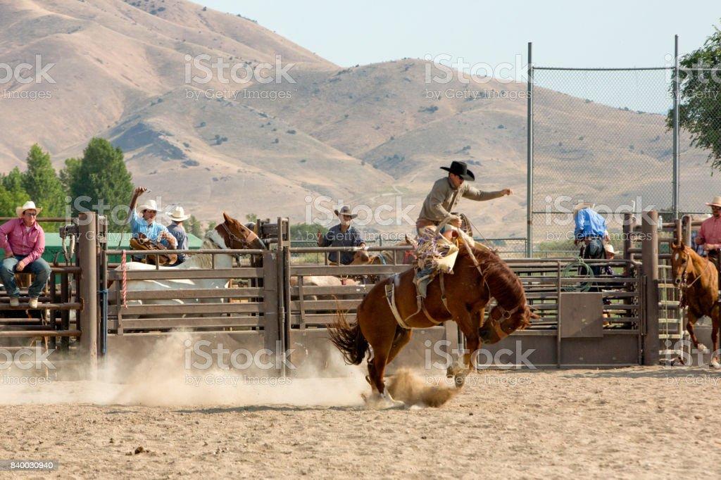 Bronc Rider dans un rodéo - Photo