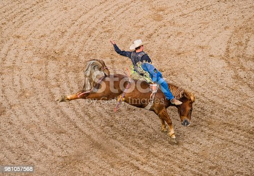 Bronco Rider At A Small Town Rodeo