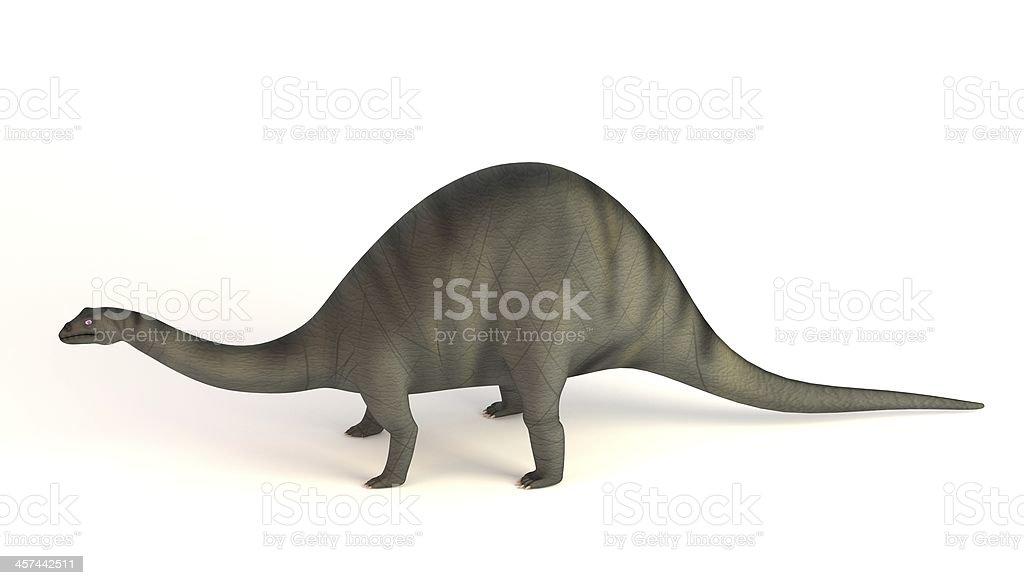 brontosaurus royalty-free stock photo