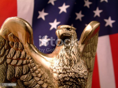 Bronze Eagle in front of American Flag