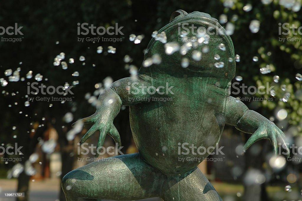 Bronze Frog royalty-free stock photo