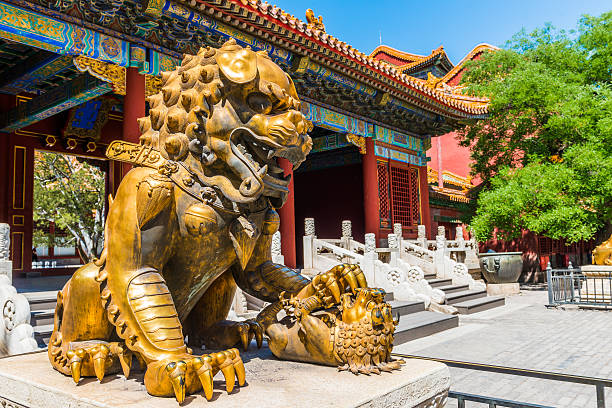 Bronze lion in the Hall of Supreme Harmony in Forbidden Bronze lion in front of the Hall of Supreme Harmony in Beijing Forbidden City, Forbidden City is one of China's landmarks forbidden city stock pictures, royalty-free photos & images