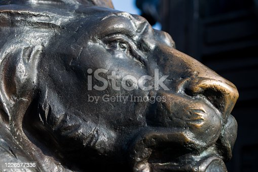 istock bronze sculpture of a lion 1226577336