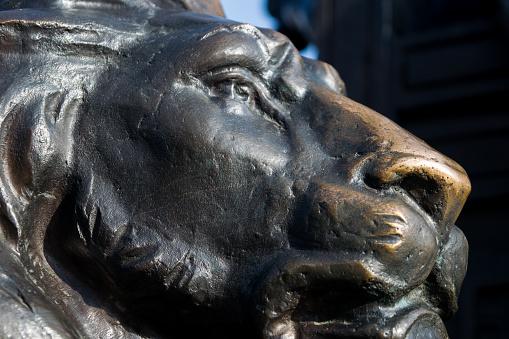 istock bronze sculpture of a lion 1226577336