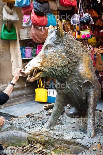 Bronze wild boar il porcellino of florence italy picture id493333436?b=1&k=6&m=493333436&s=612x612&h=yi6mn1uw4phiexcmsg6a1b2cn6avxlpg5rrrthm9bh4=