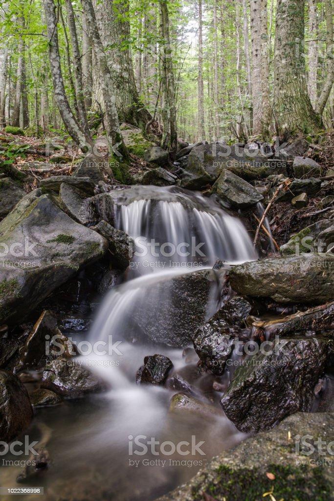 Brook in Abetone, Pistoia, Tuscany, Italy - Misty water effect 2:3 - Стоковые фото Без людей роялти-фри