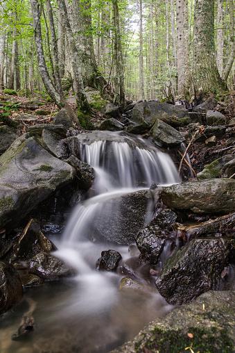 Brook In Abetone Pistoia Tuscany Italy Misty Water Effect 23 — стоковые фотографии и другие картинки Без людей