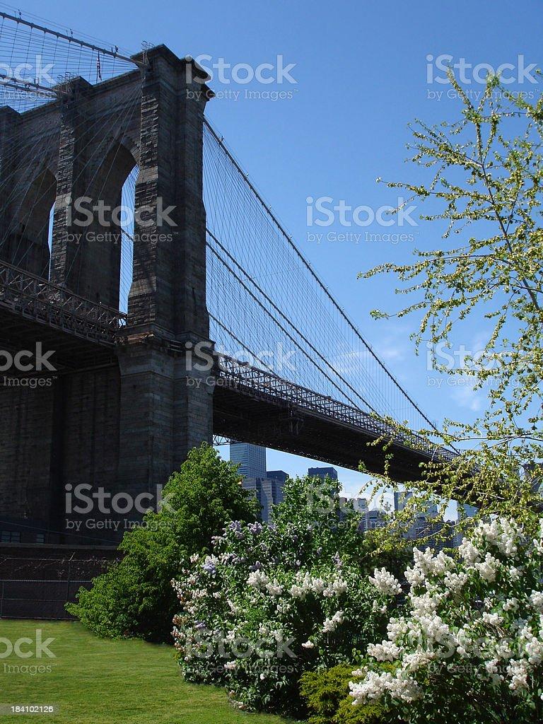 Brooklyn Bridge in Springtime royalty-free stock photo