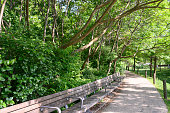 This is a color photograph of wooden benches outdoors along the sidewalk in Brooklyn Bridge Park on a sunny spring day.