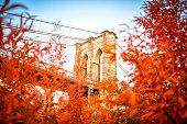 Fall under the Brooklyn Bridge, New York