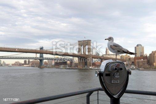 istock Brooklyn Bridge 167771091