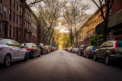 Brooklyn Brownstones and Cars on a Treelined Street