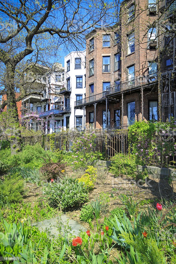 Brooklyn brownstones at spring stock photo