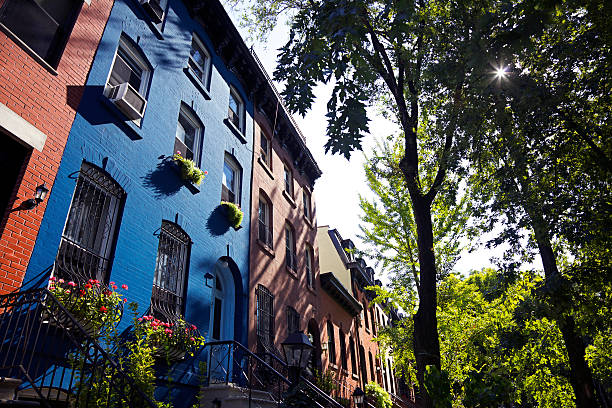 brooklyn brownstones - ivy building imagens e fotografias de stock