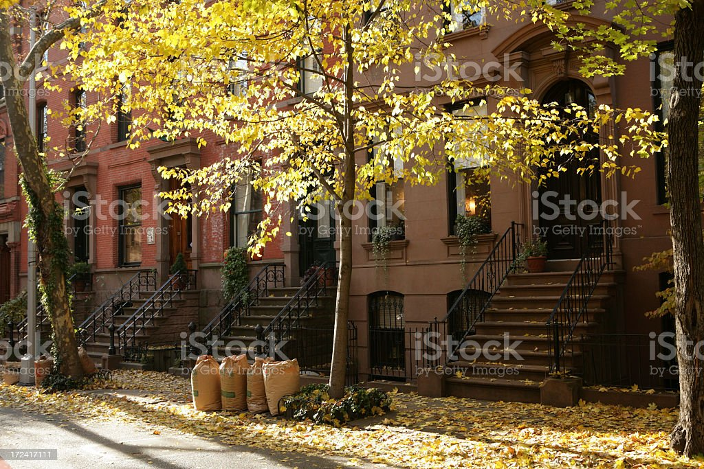 Brooklyn Historic Brownstone Townhouses Fall Leaves royalty-free stock photo