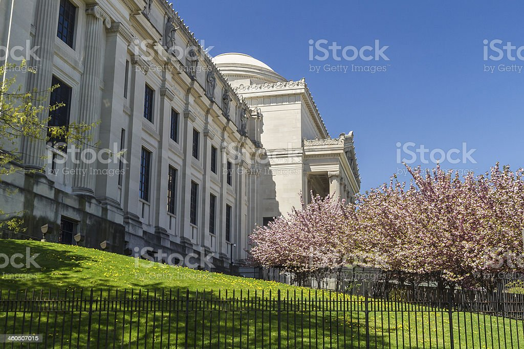 Brooklyn Museum Lawn and CHerry Trees stock photo