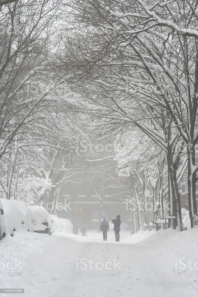 Brooklyn New York City Snow Storm Street royalty-free stock photo